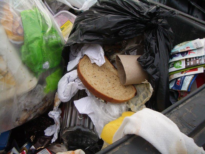duonos riekė šiukšlių konteineryje